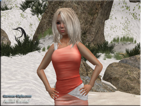 snapshot_0055_002