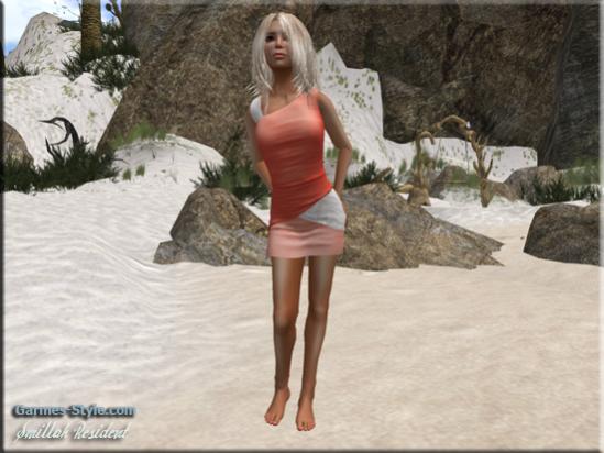 snapshot_0055_004